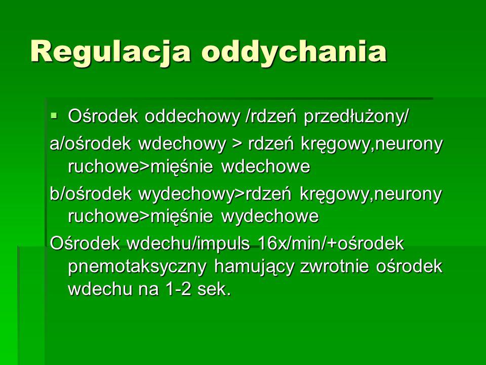 Regulacja oddychania Ośrodek oddechowy /rdzeń przedłużony/