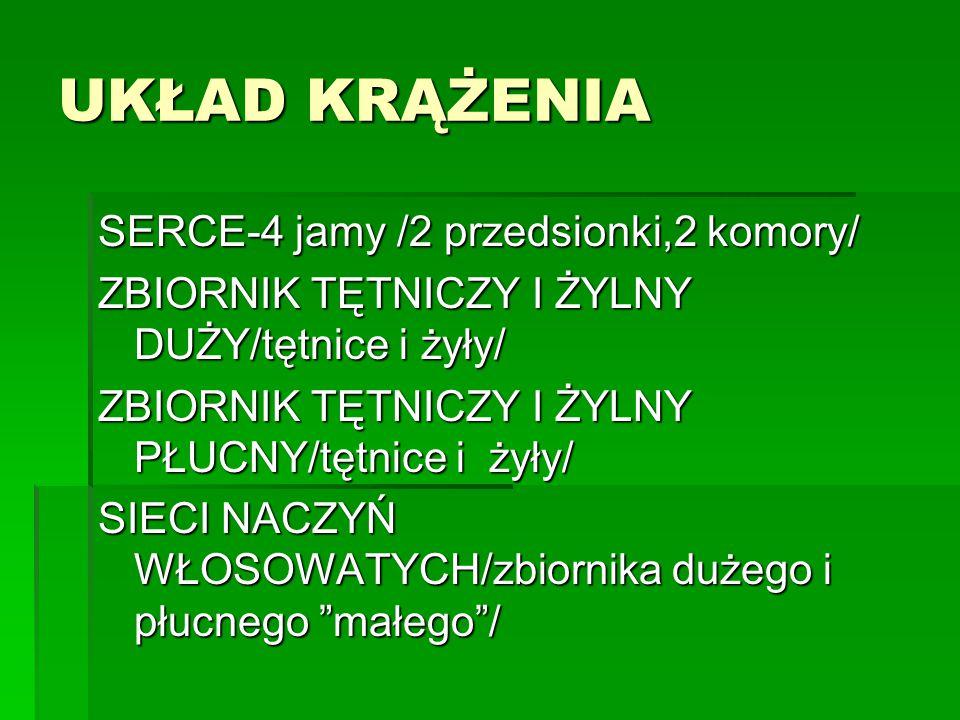 UKŁAD KRĄŻENIA SERCE-4 jamy /2 przedsionki,2 komory/