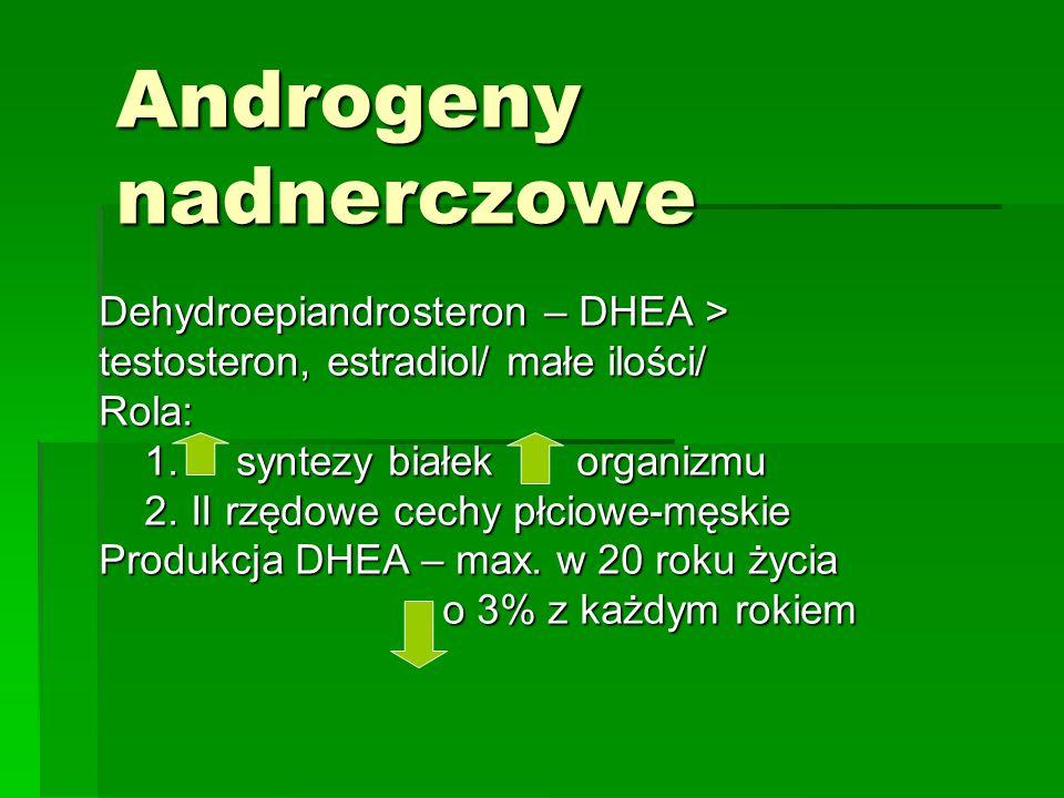Androgeny nadnerczowe