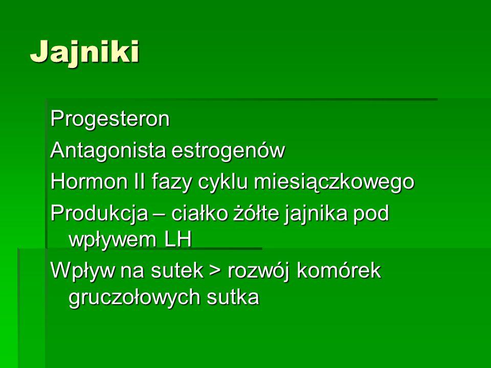 Jajniki Progesteron Antagonista estrogenów
