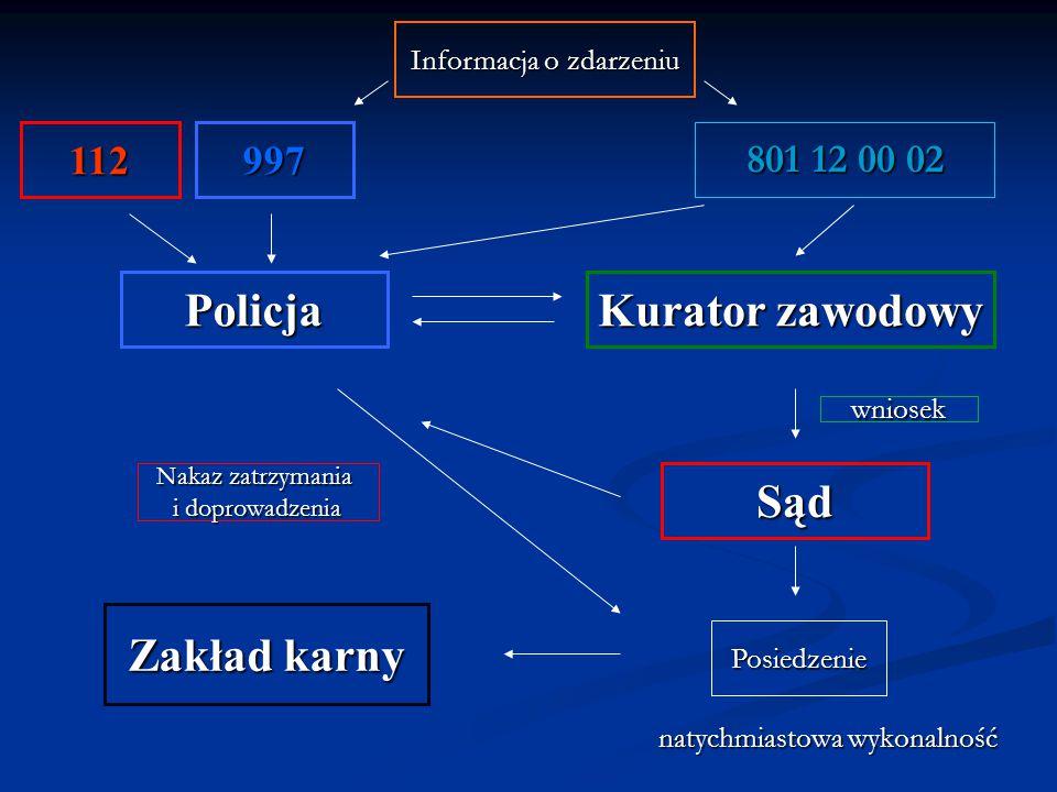 Policja Kurator zawodowy Sąd Zakład karny