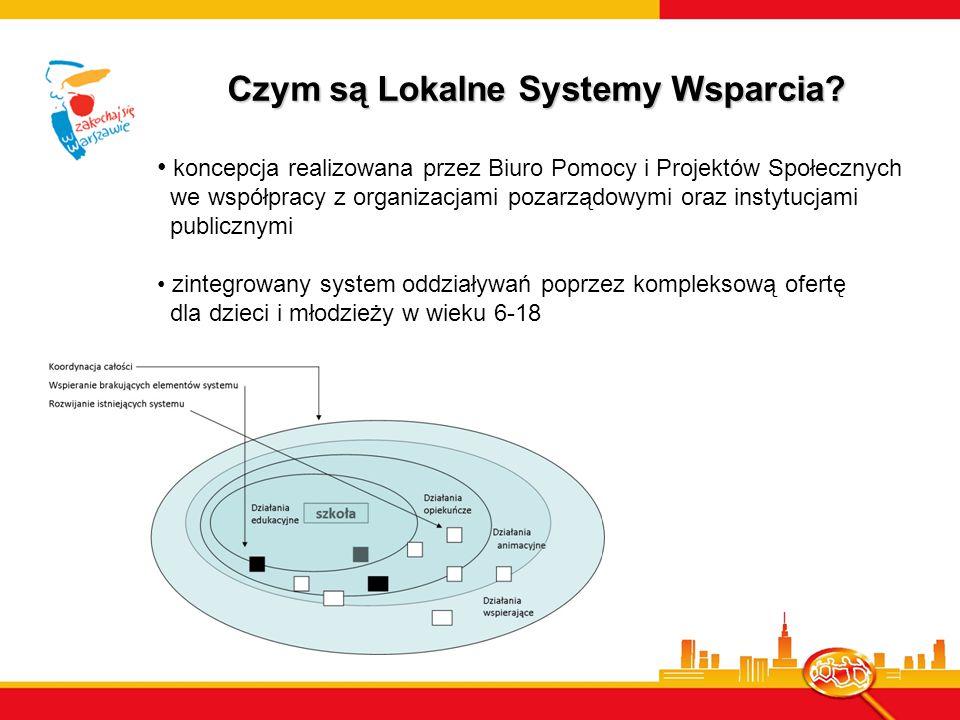 Czym są Lokalne Systemy Wsparcia