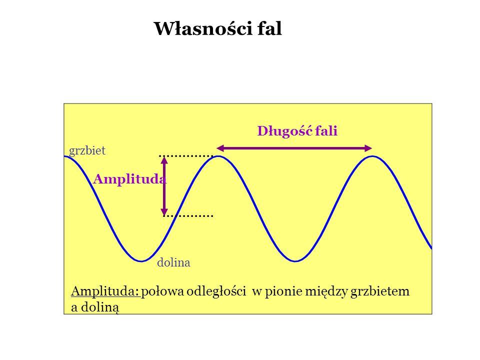 Własności fal Długość fali Amplituda