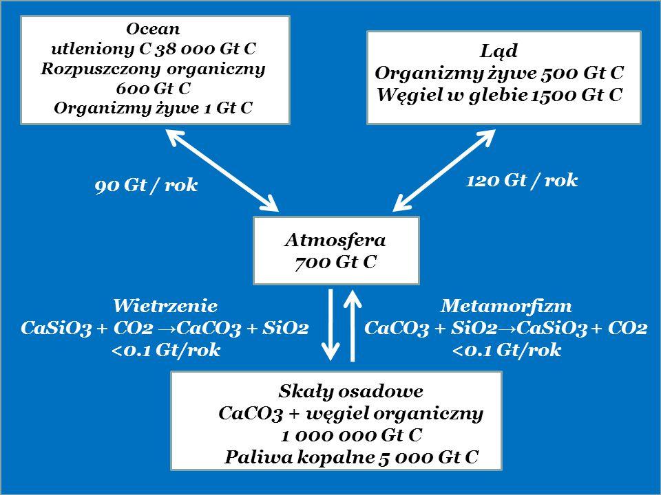 Rozpuszczony organiczny 600 Gt C CaCO3 + węgiel organiczny