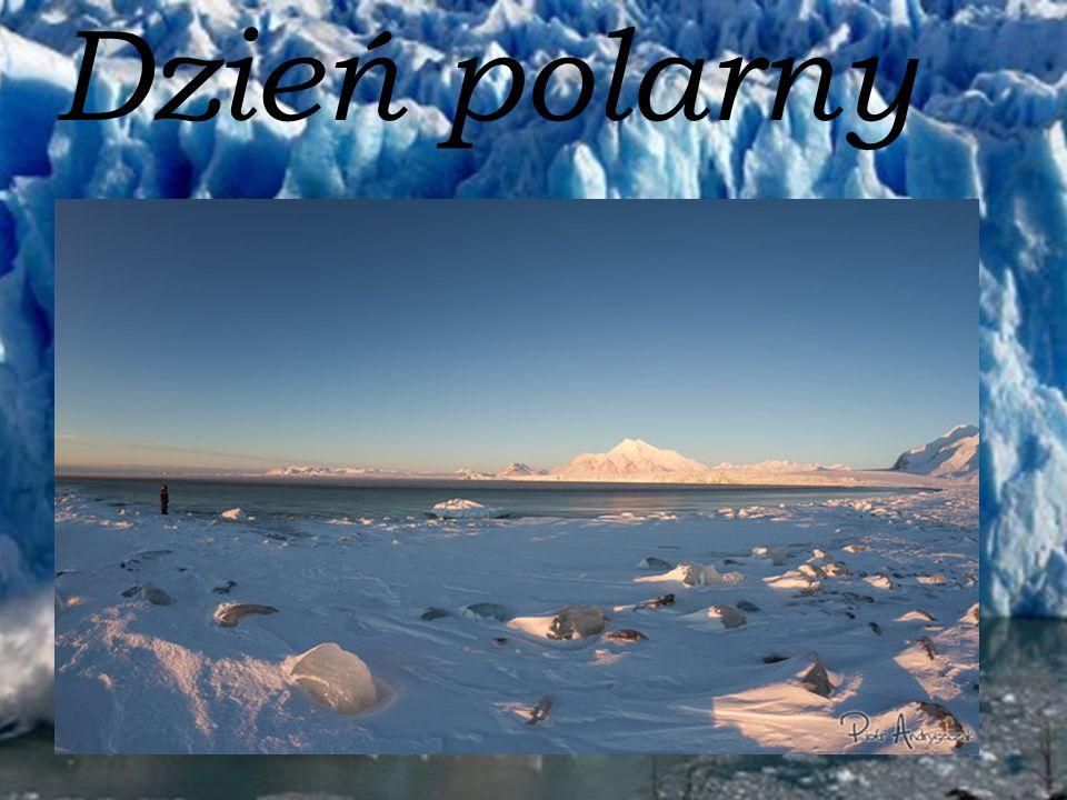 Dzień polarny