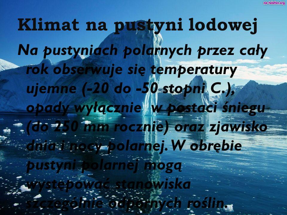 Klimat na pustyni lodowej