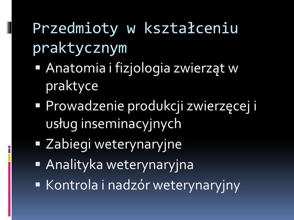 Przedmioty w kształceniu praktycznym