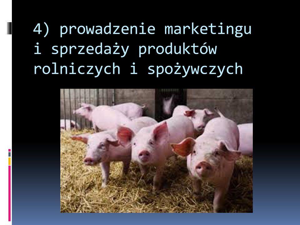 4) prowadzenie marketingu i sprzedaży produktów rolniczych i spożywczych