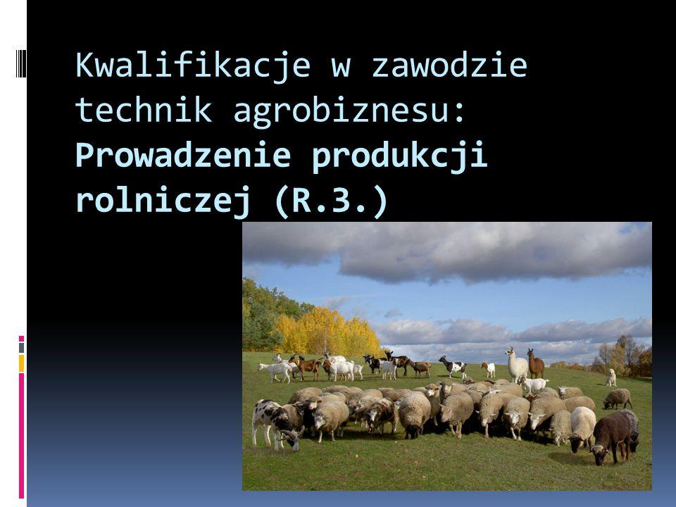 Kwalifikacje w zawodzie technik agrobiznesu: Prowadzenie produkcji rolniczej (R.3.)