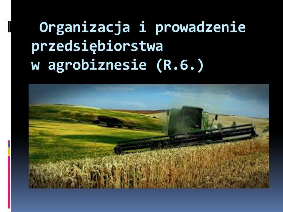 Organizacja i prowadzenie przedsiębiorstwa w agrobiznesie (R.6.)