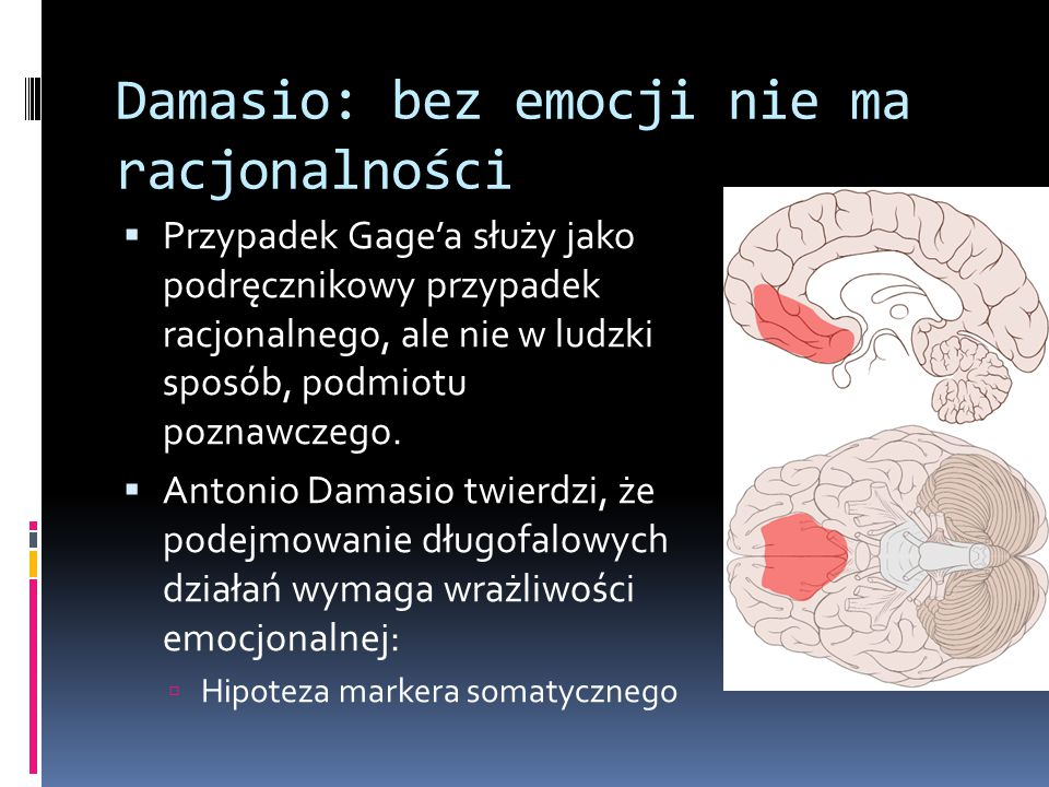 Damasio: bez emocji nie ma racjonalności