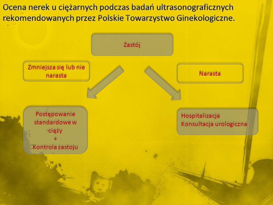 Ocena nerek u ciężarnych podczas badań ultrasonograficznych rekomendowanych przez Polskie Towarzystwo Ginekologiczne.