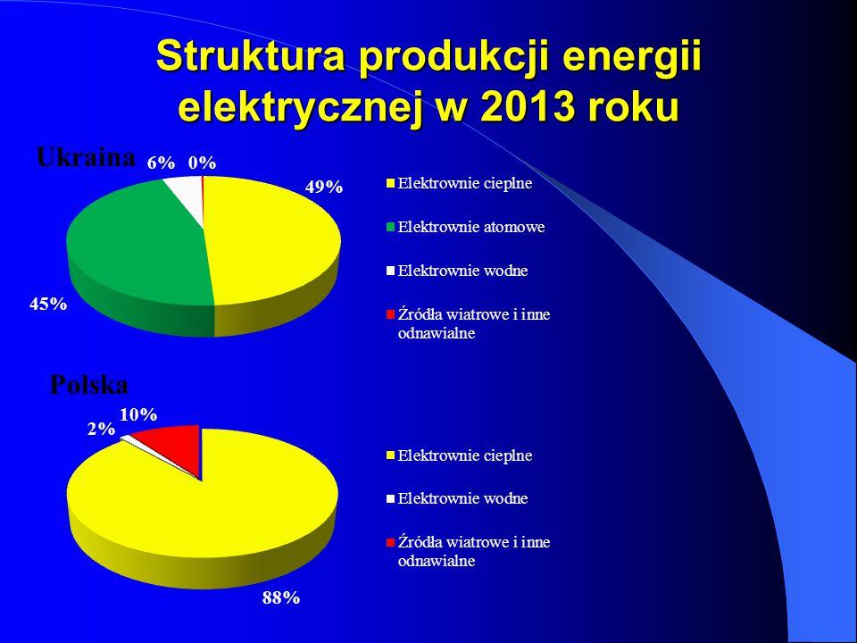 Struktura produkcji energii elektrycznej w 2013 roku