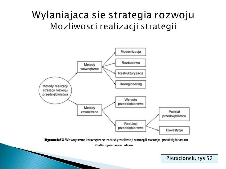 Wylaniajaca sie strategia rozwoju Mozliwosci realizacji strategii