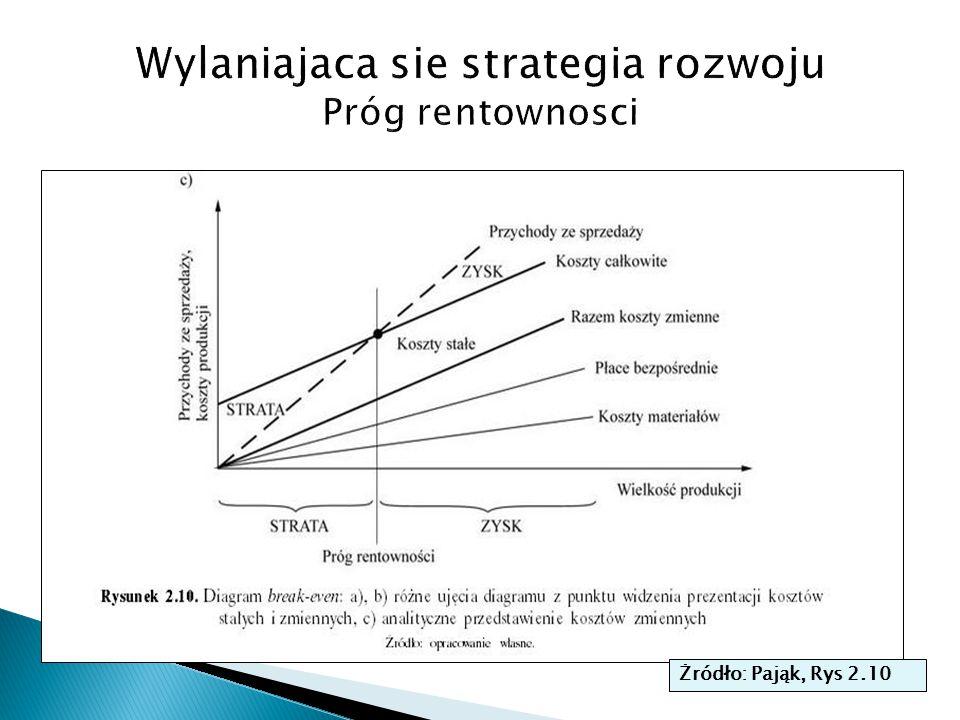 Wylaniajaca sie strategia rozwoju Próg rentownosci
