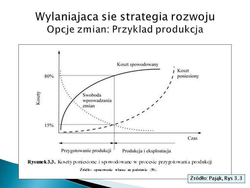 Wylaniajaca sie strategia rozwoju Opcje zmian: Przyklad produkcja