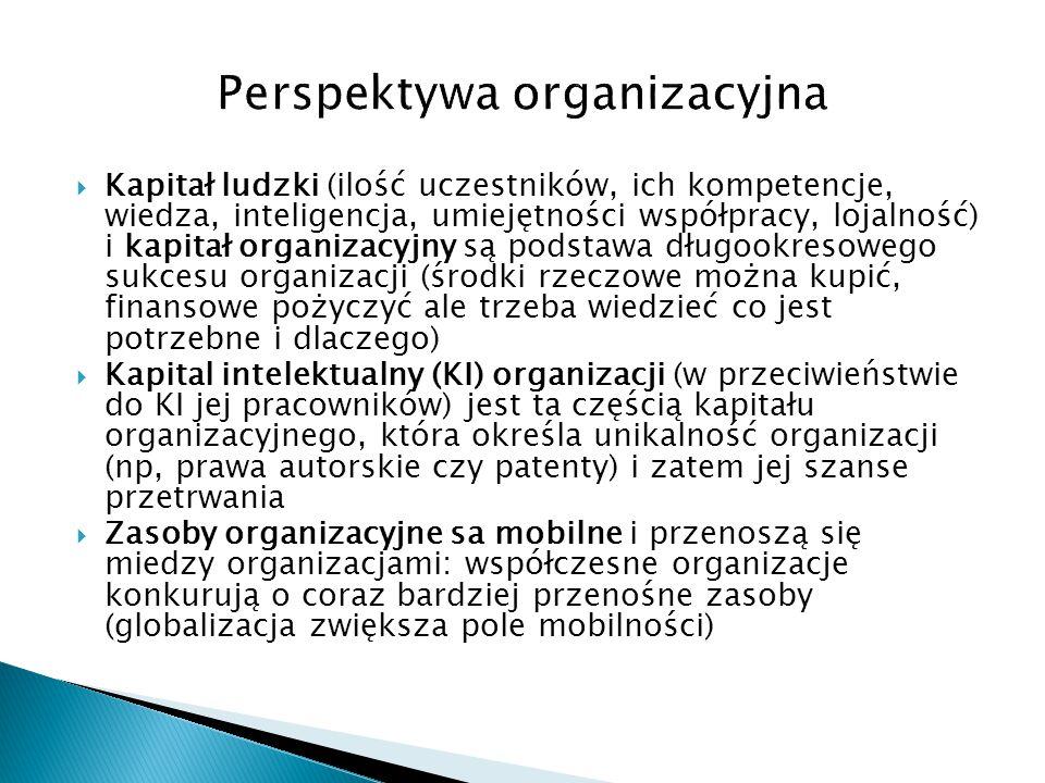 Perspektywa organizacyjna