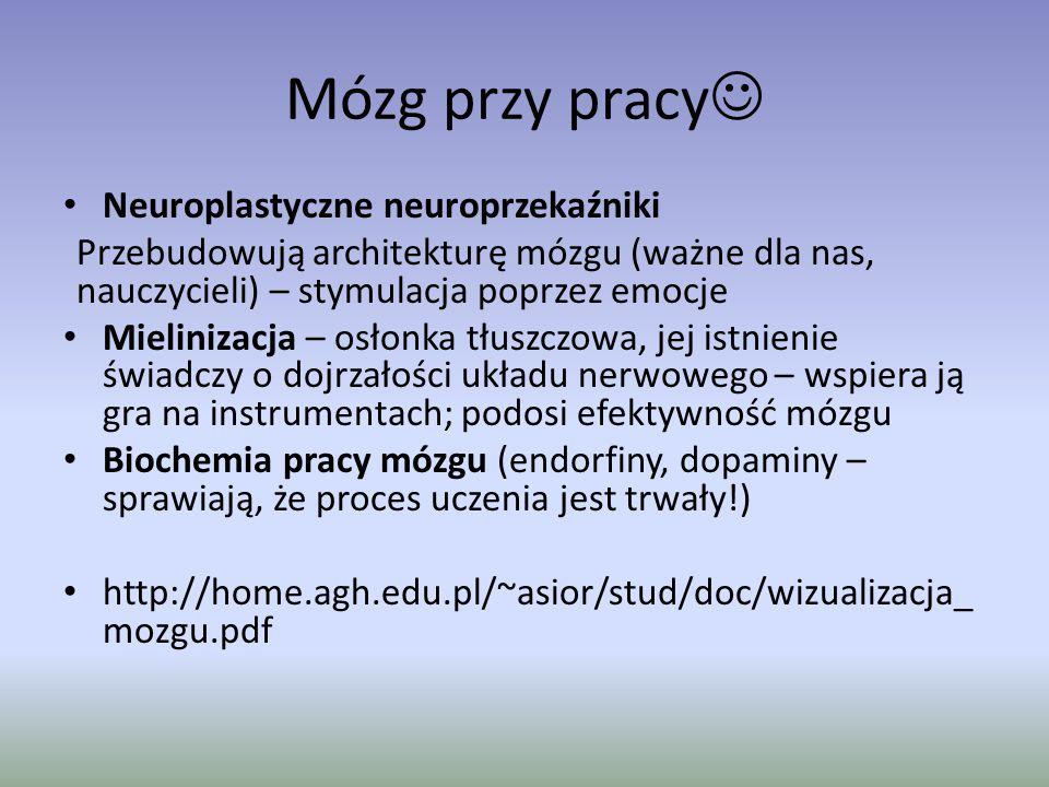 Mózg przy pracy Neuroplastyczne neuroprzekaźniki