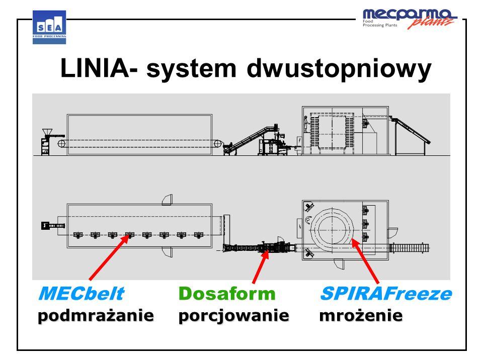 LINIA- system dwustopniowy