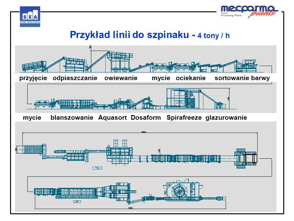 Przykład linii do szpinaku - 4 tony / h