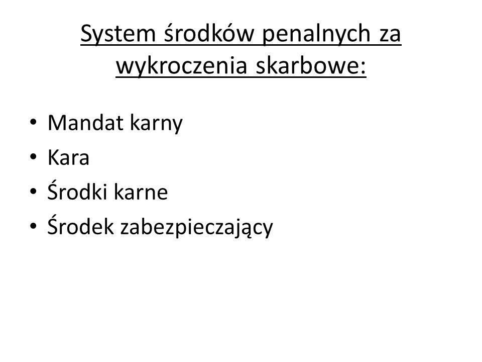System środków penalnych za wykroczenia skarbowe: