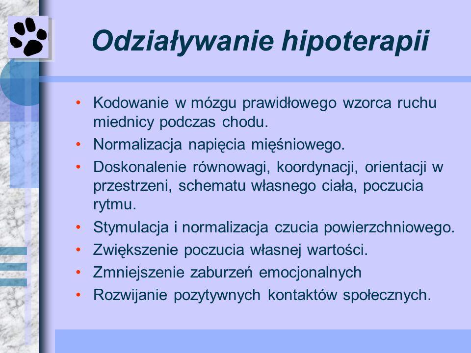 Odziaływanie hipoterapii