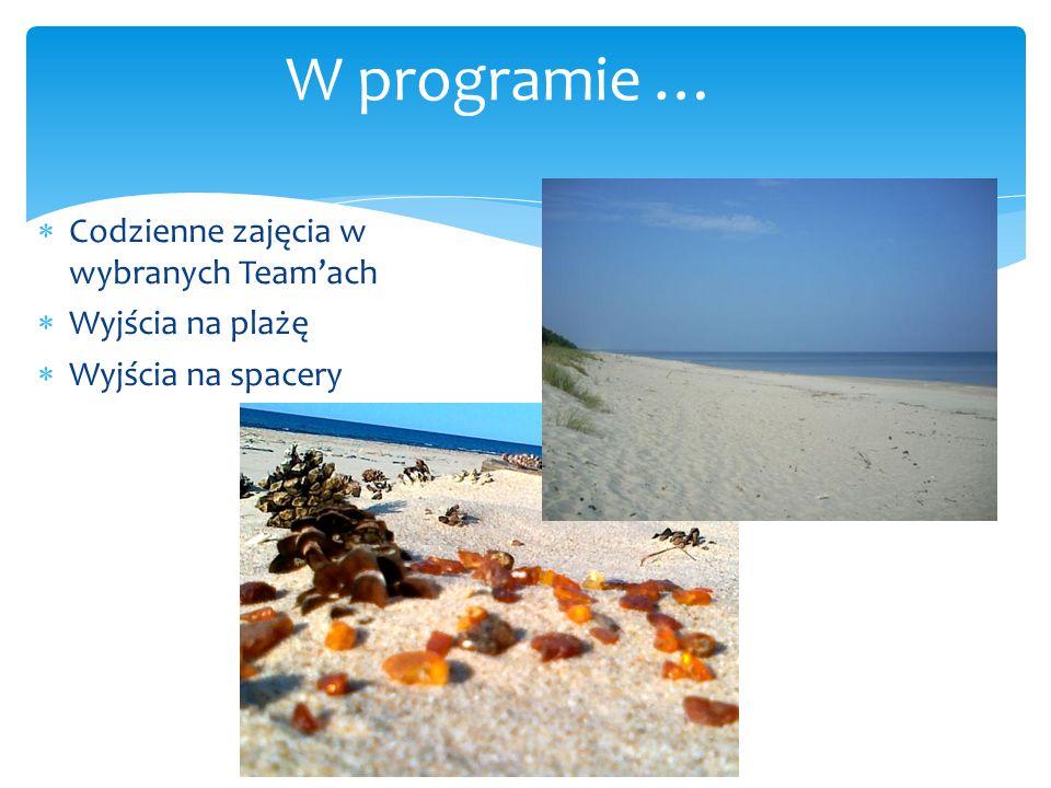 W programie … Codzienne zajęcia w wybranych Team'ach Wyjścia na plażę