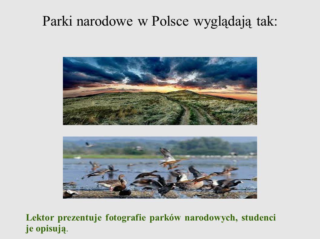 Parki narodowe w Polsce wyglądają tak: