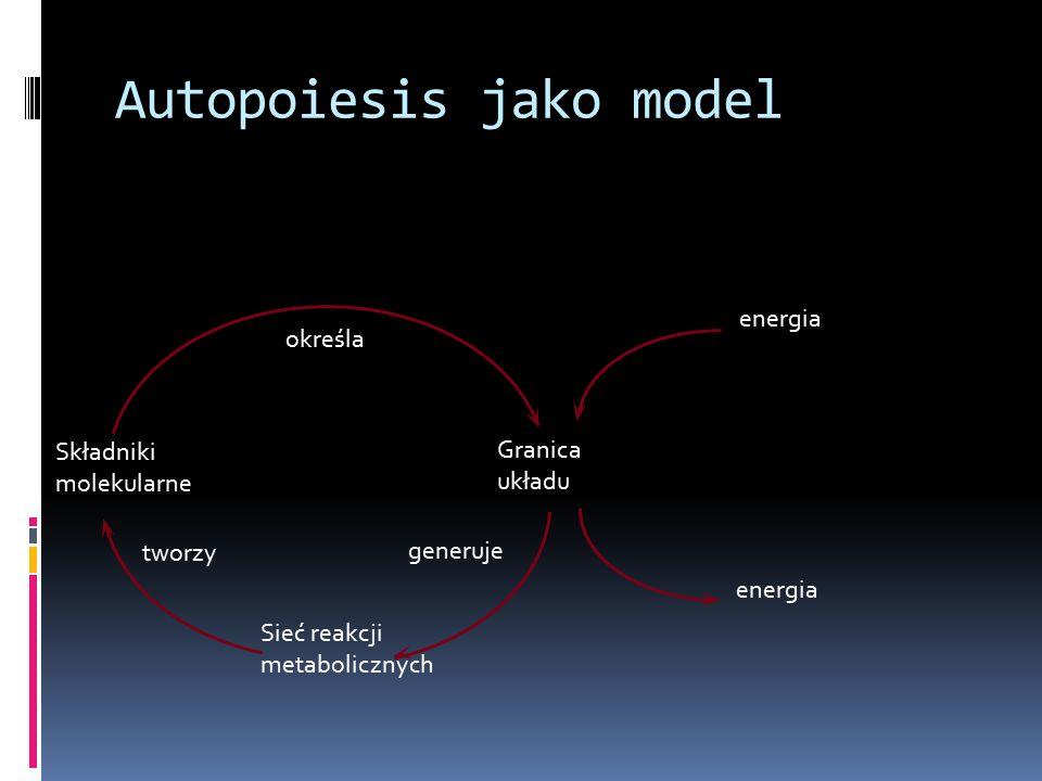Autopoiesis jako model