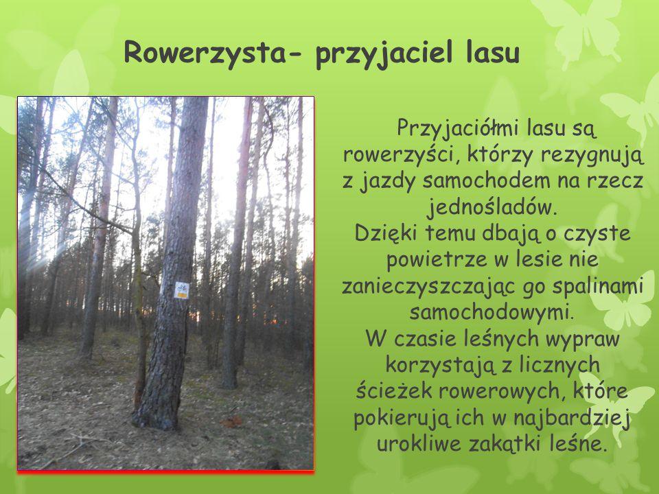 Rowerzysta- przyjaciel lasu
