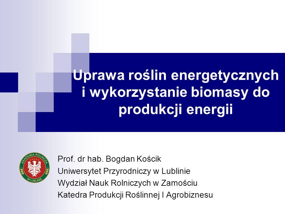Uprawa roślin energetycznych i wykorzystanie biomasy do produkcji energii