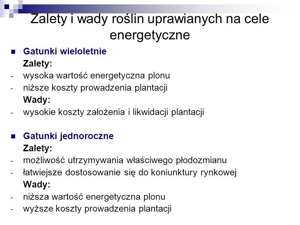 Zalety i wady roślin uprawianych na cele energetyczne