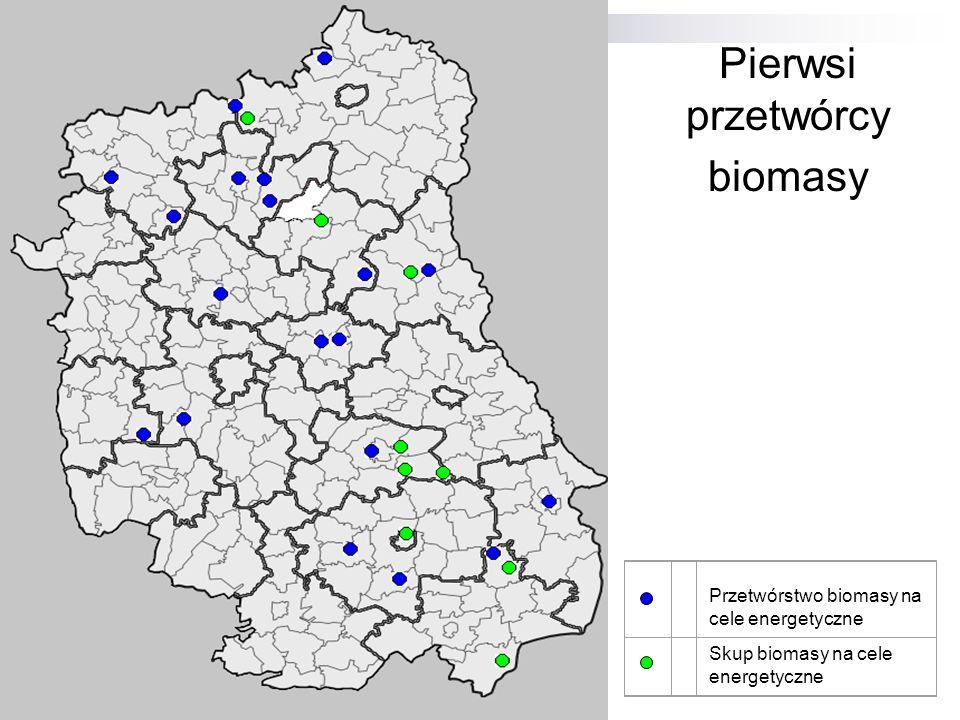 Pierwsi przetwórcy biomasy