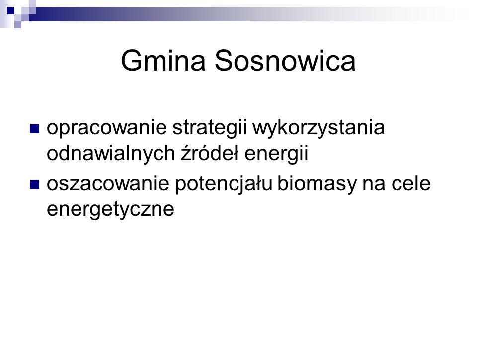 Gmina Sosnowica opracowanie strategii wykorzystania odnawialnych źródeł energii.
