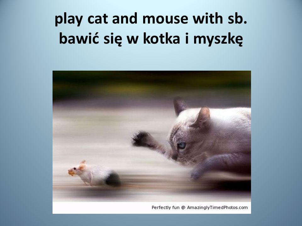 play cat and mouse with sb. bawić się w kotka i myszkę