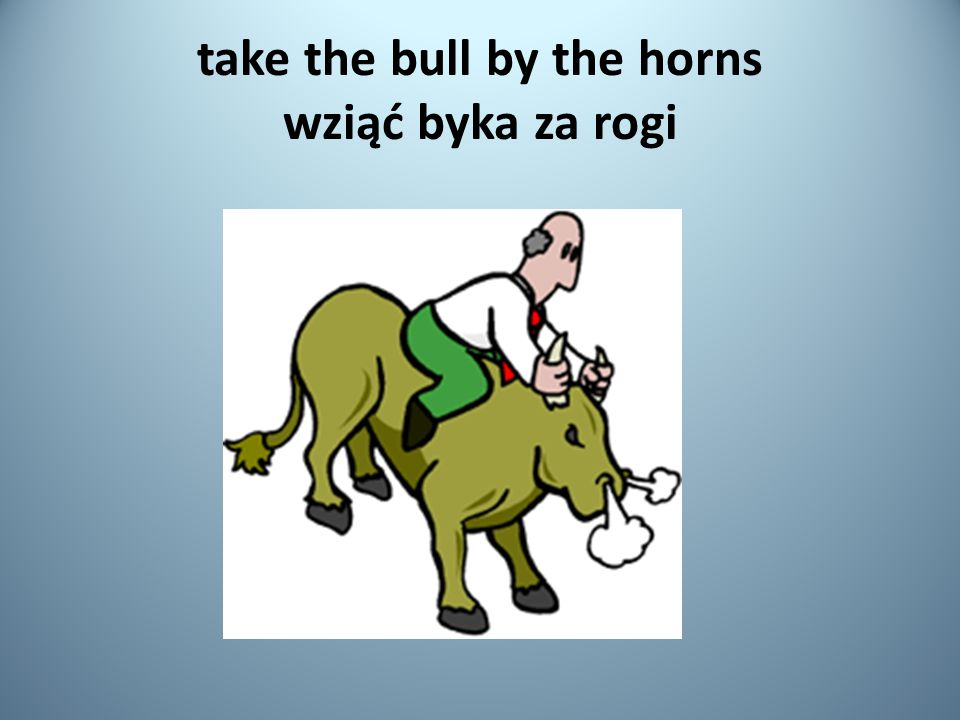 take the bull by the horns wziąć byka za rogi