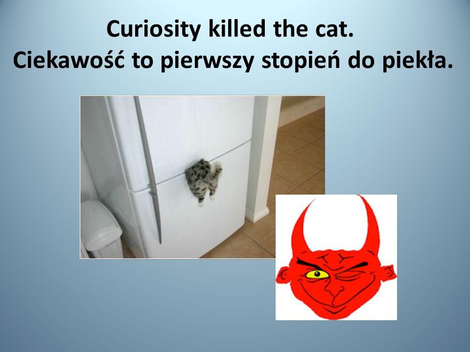 Curiosity killed the cat. Ciekawość to pierwszy stopień do piekła.