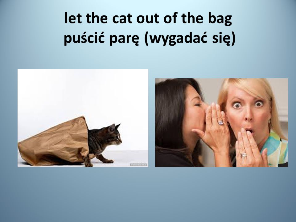 let the cat out of the bag puścić parę (wygadać się)