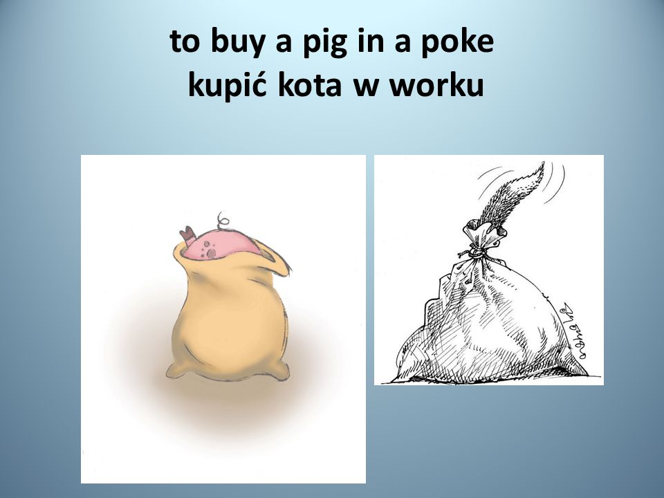 to buy a pig in a poke kupić kota w worku