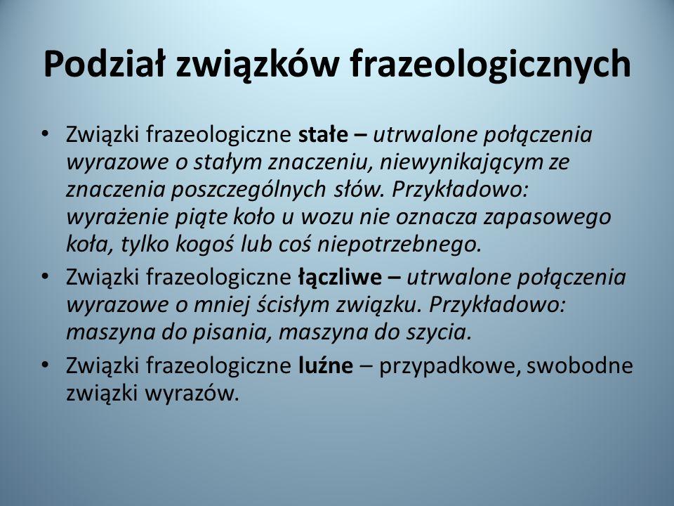 Podział związków frazeologicznych