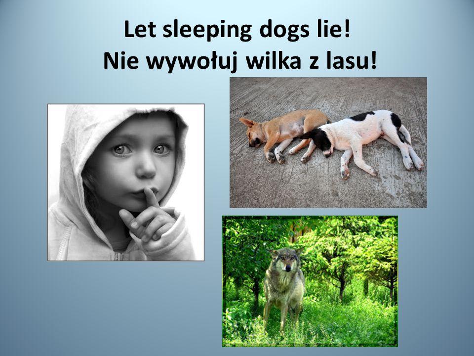 Let sleeping dogs lie! Nie wywołuj wilka z lasu!