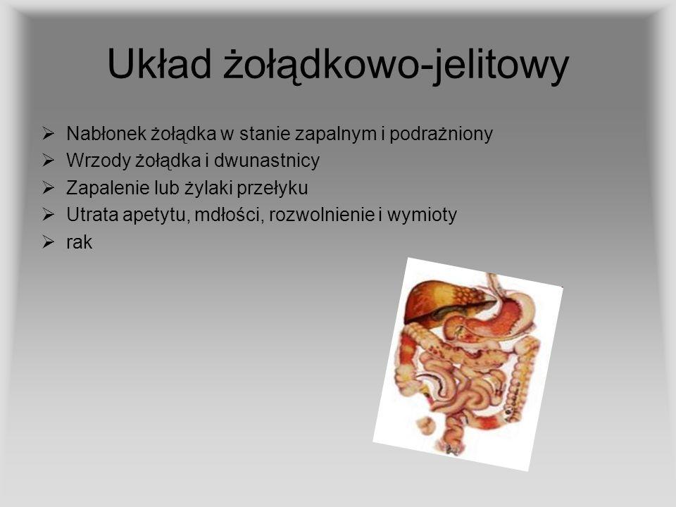 Układ żołądkowo-jelitowy