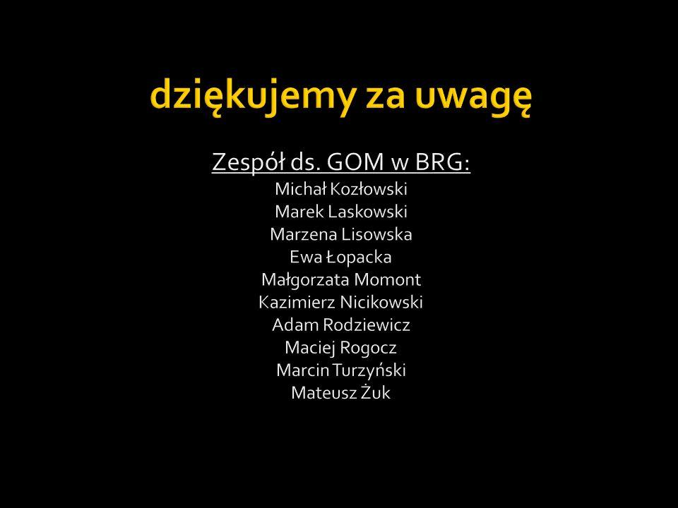 Zespół ds. GOM w BRG: Michał Kozłowski Marek Laskowski