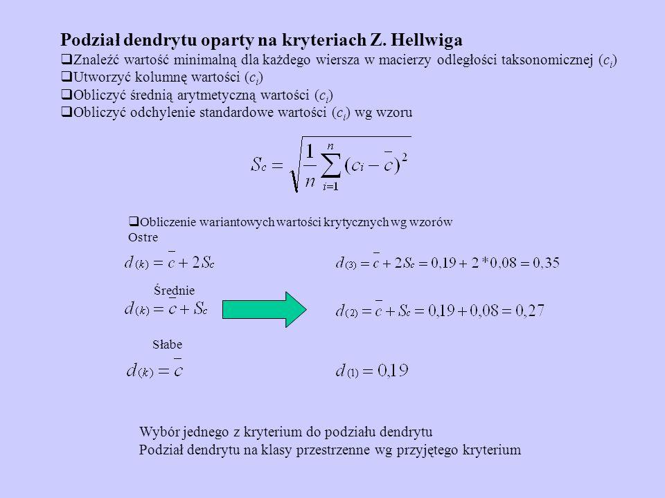 Podział dendrytu oparty na kryteriach Z. Hellwiga