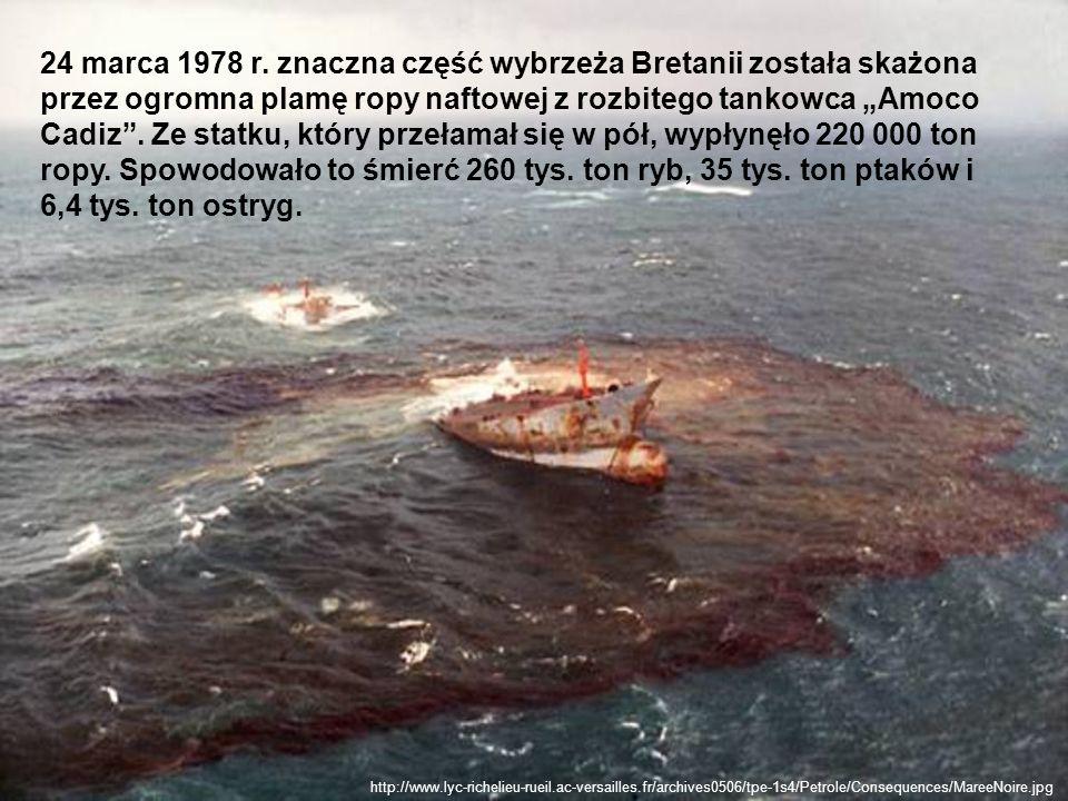 """24 marca 1978 r. znaczna część wybrzeża Bretanii została skażona przez ogromna plamę ropy naftowej z rozbitego tankowca """"Amoco Cadiz . Ze statku, który przełamał się w pół, wypłynęło 220 000 ton ropy. Spowodowało to śmierć 260 tys. ton ryb, 35 tys. ton ptaków i 6,4 tys. ton ostryg."""