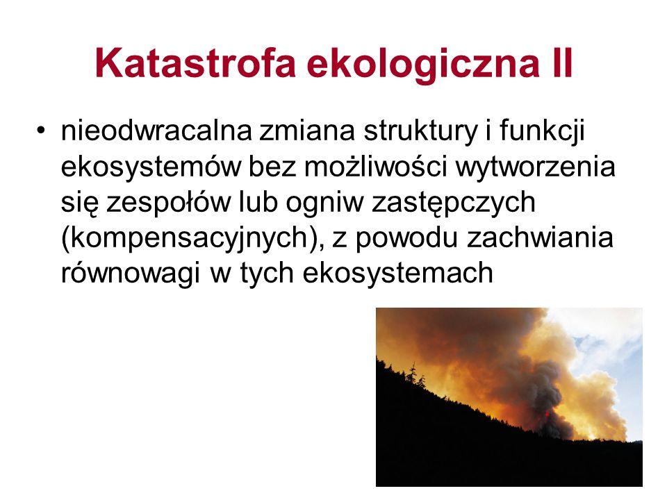 Katastrofa ekologiczna II