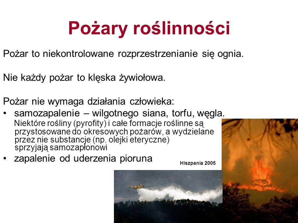 Pożary roślinności Pożar to niekontrolowane rozprzestrzenianie się ognia. Nie każdy pożar to klęska żywiołowa.