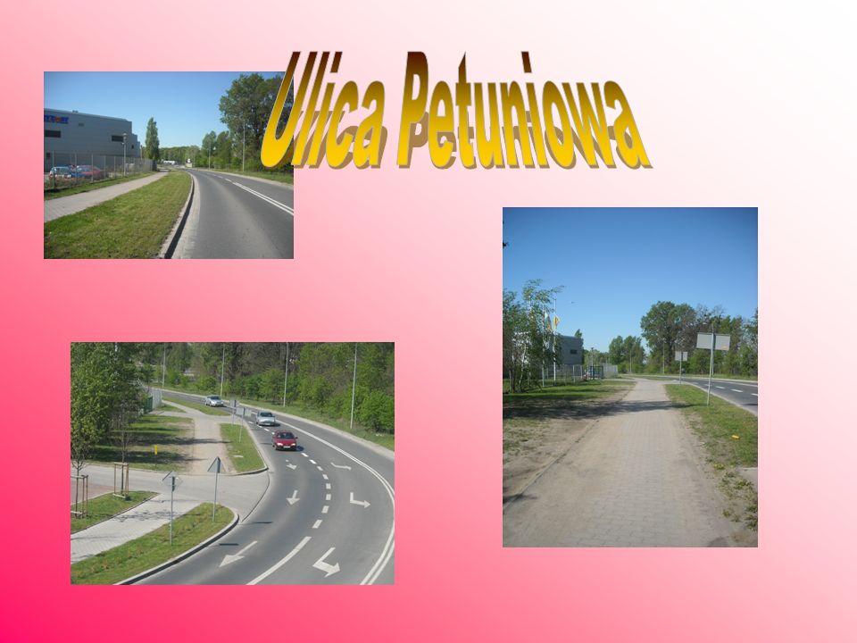 Ulica Petuniowa