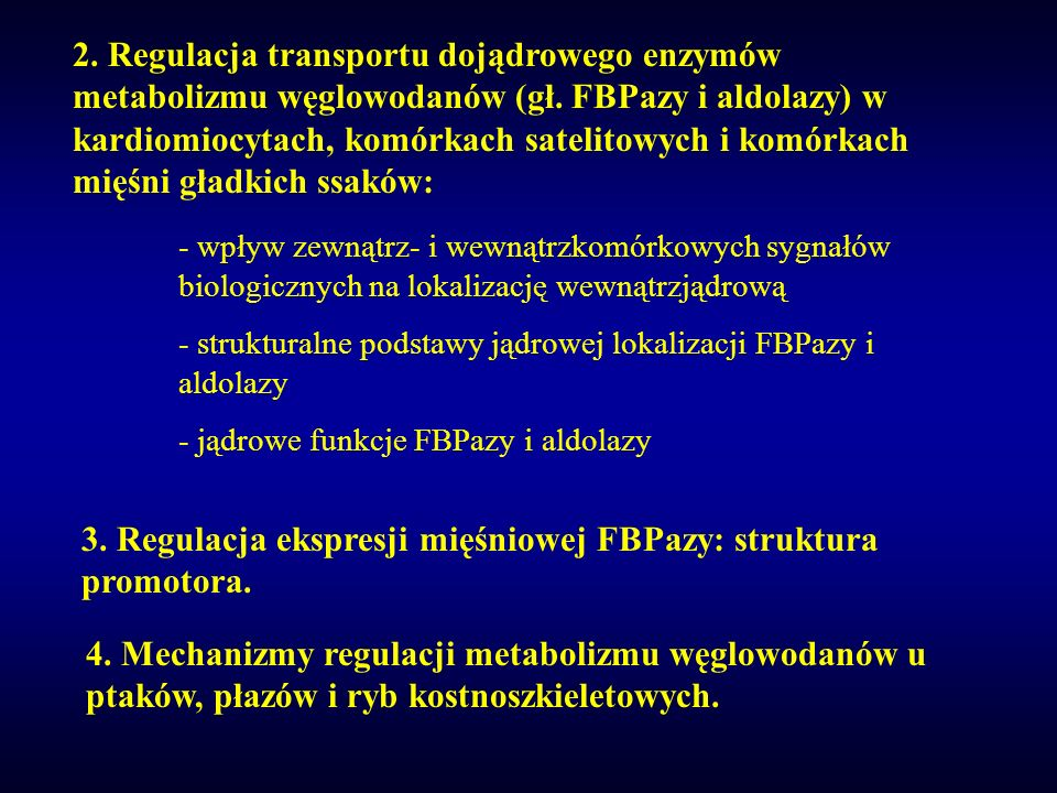 3. Regulacja ekspresji mięśniowej FBPazy: struktura promotora.