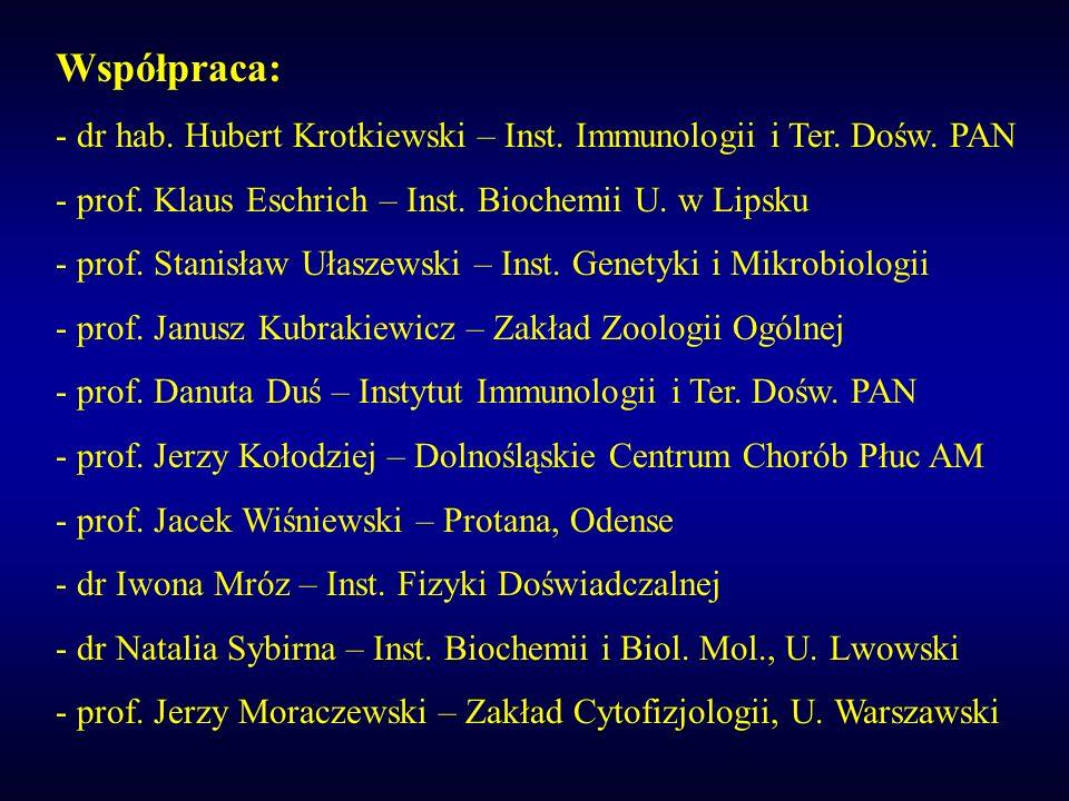 Współpraca: dr hab. Hubert Krotkiewski – Inst. Immunologii i Ter. Dośw. PAN. prof. Klaus Eschrich – Inst. Biochemii U. w Lipsku.